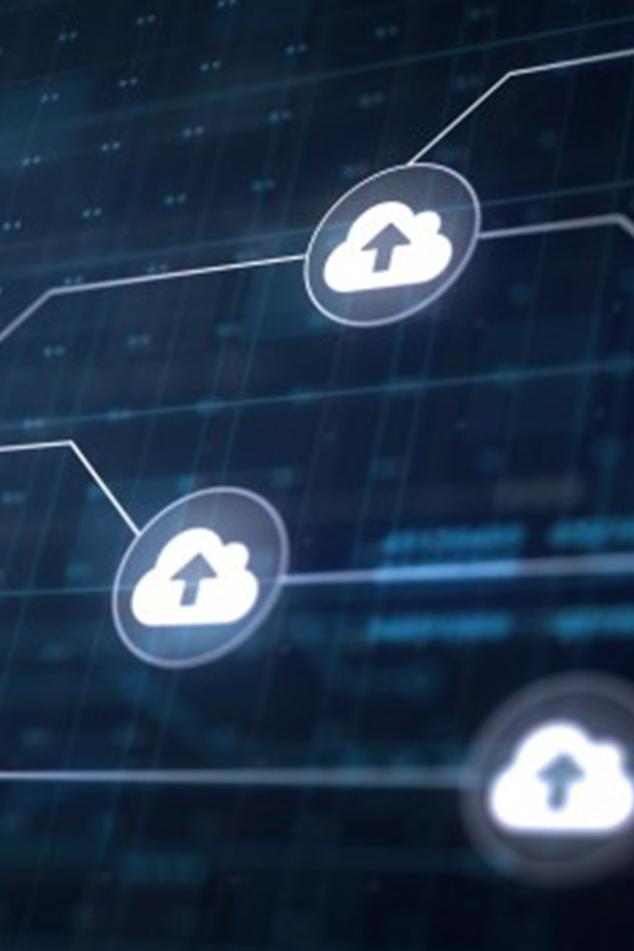 ERP Data Services