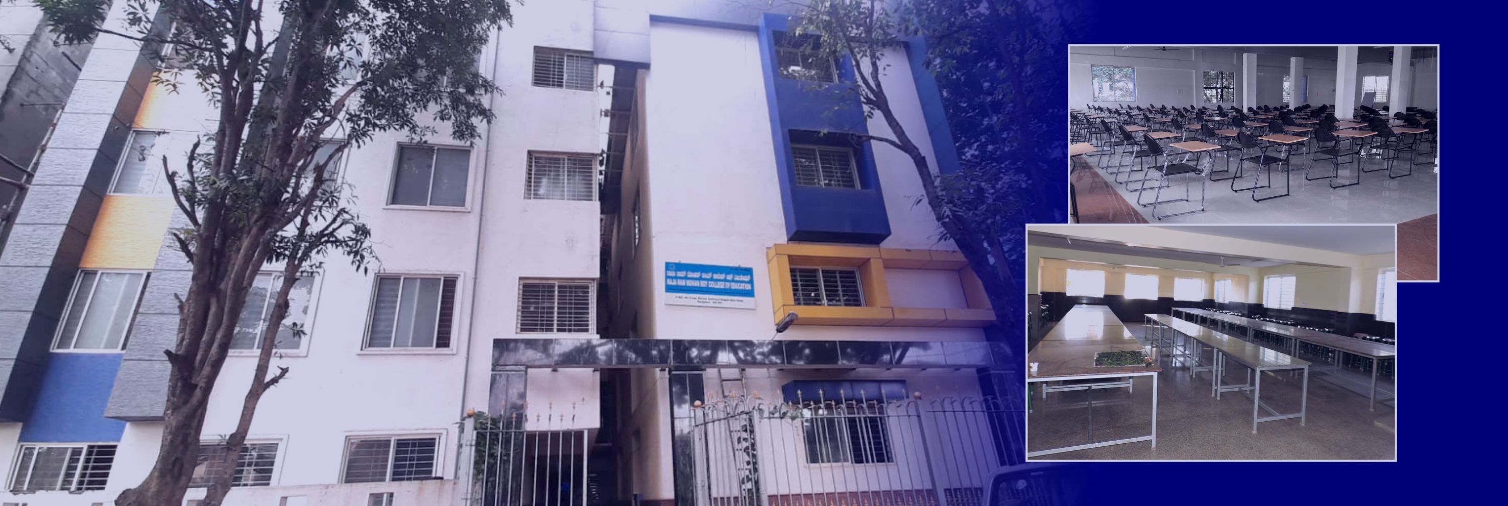 Rsja Ram Mohan Roy College