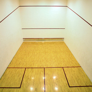 Godrej Woodsman Estate, Hebbal ( squash court)