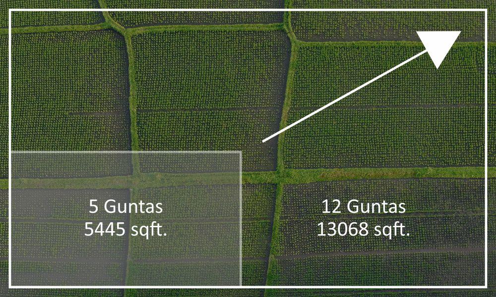 Available Plot Sizes 5 to 12 Guntas